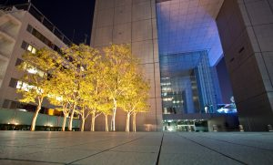 commercial-outdoor-lighting-factors-to-consider